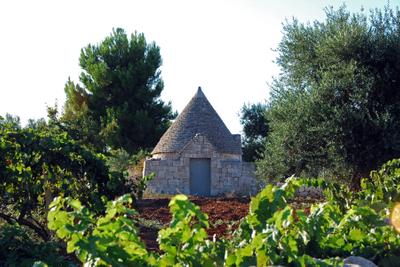trullo with vines