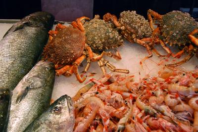 Venice, at the fish market.jpg