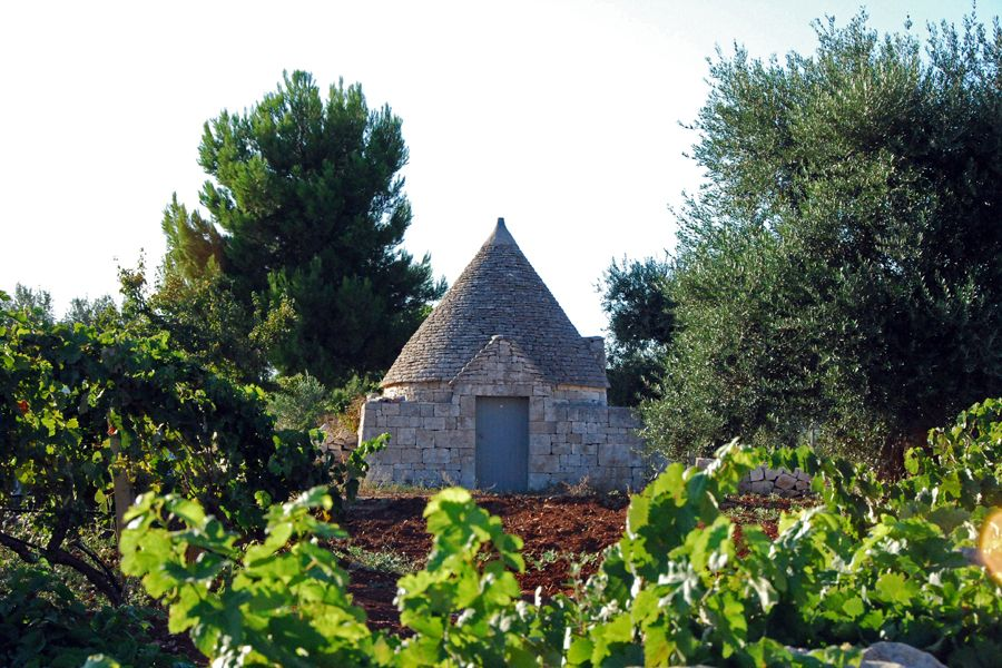 trullo with vines