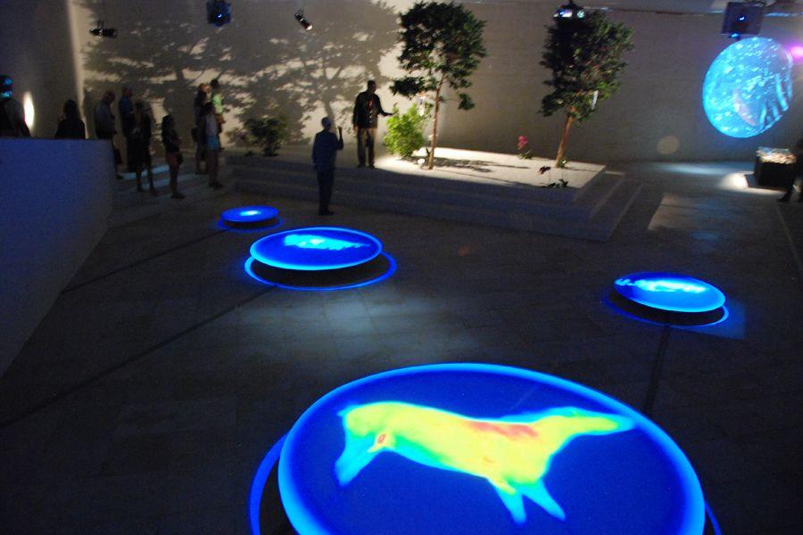 Venice Biennale 14.jpg