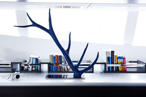 Blue Deer features 1.jpg