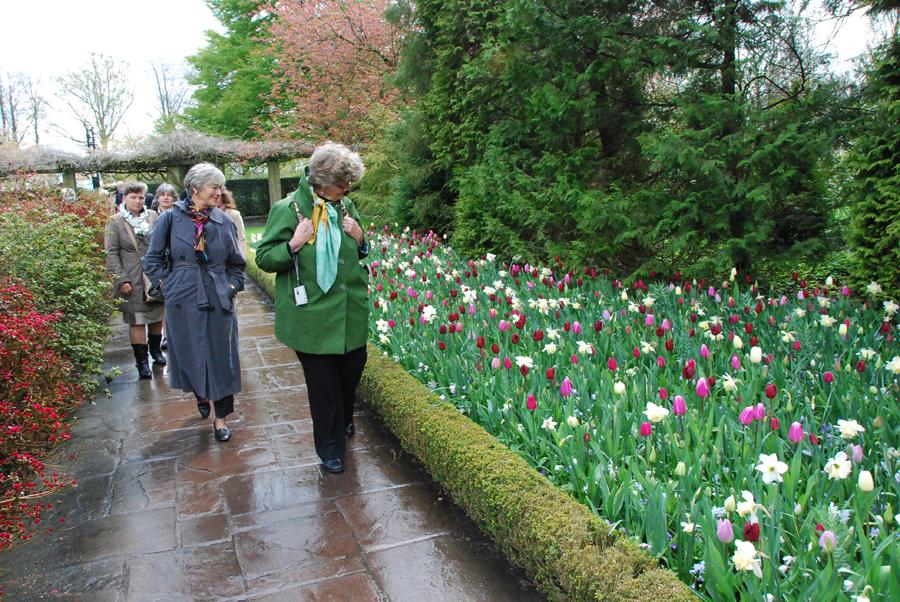 Tulips at Keukenhof Gardens near Amsterdam.jpg