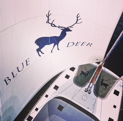 The Blue Deer