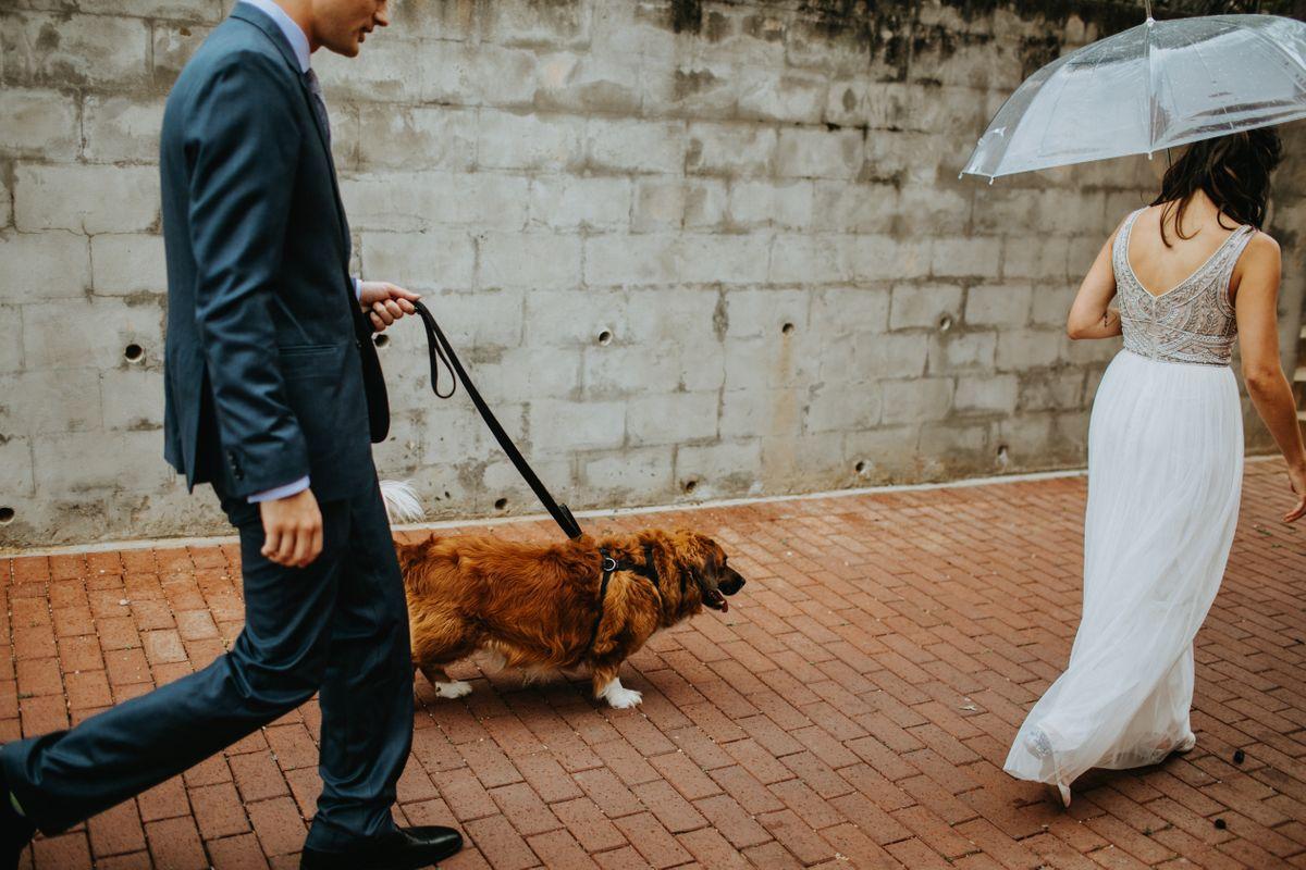 lesbian wedding austin wedding photographer 0002.JPG