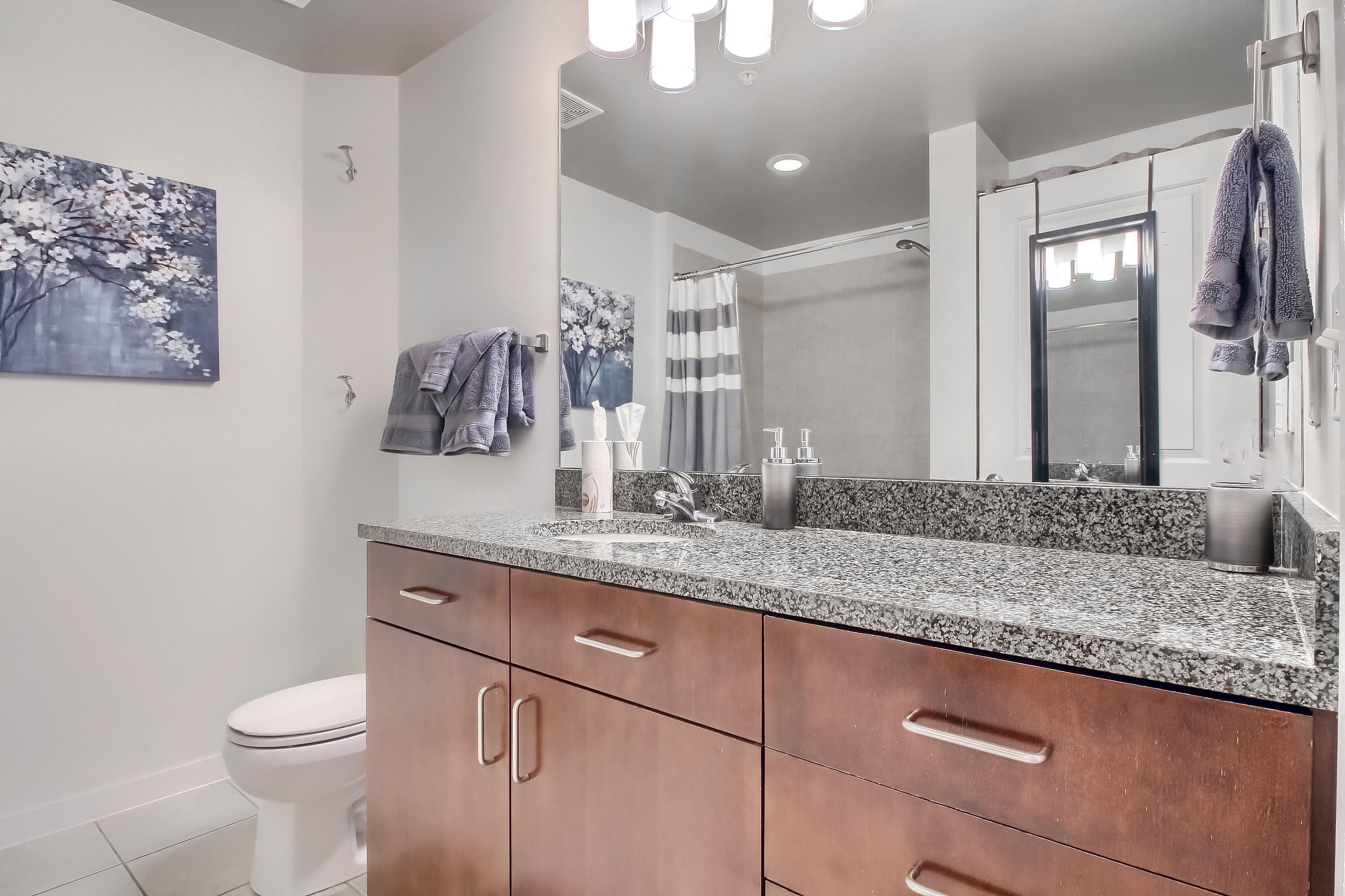 05_Main_Bathroom__MG_1142.JPG