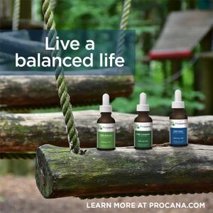 Procana_Balanced Life_Droppers on swing.jpg