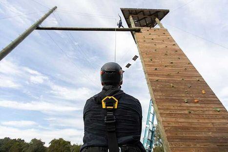 img_10-driftwood+climb.jpg
