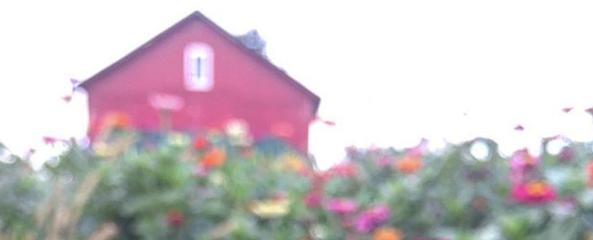 Screen Shot 2018-09-22 at 4.23.58 PM.png