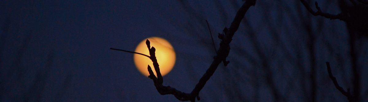 2018-03 - Moon Night 5.jpg