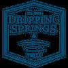 DSV Logo.Clear.png