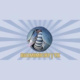 Biomimcry Texas
