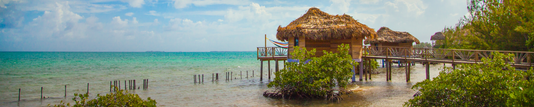 Thatch Caye Overwater Bungalow