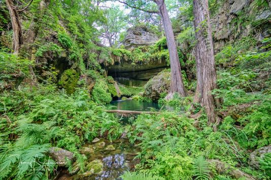Westcave's Lush Grotto