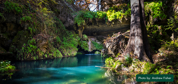 Emerald Pool Grotto