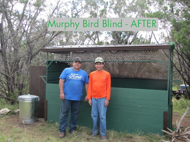 Murphy Bird Blind After.jpg
