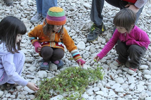 Austin, TX school children explore nature in green schools