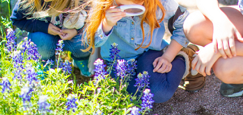 Bluebonnets and Kiddos