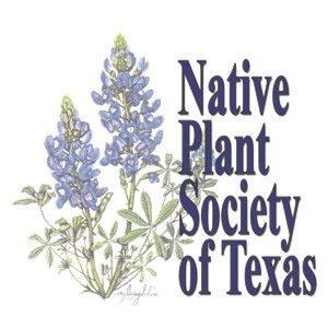 Native Plant Society.jpg