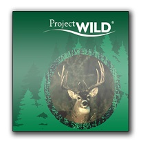 projectWild_resize for website.jpg