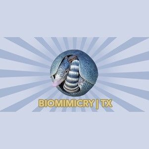 Biomimcry Texas