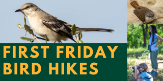 Copy of Copy of Conservation First Friday Bird Hikes.png