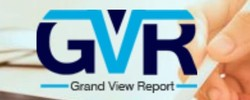grand view report v3.jpg