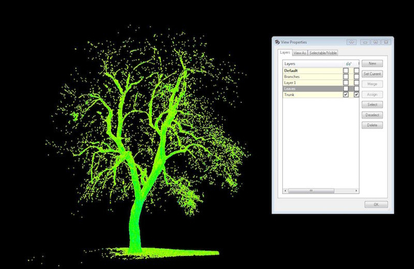 treexoffice-colorado-scan-3.JPG
