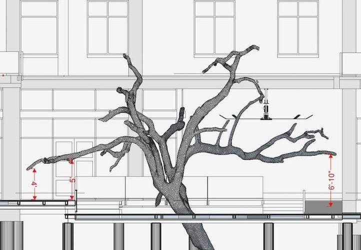 3d-laser-scanning-trees-3.jpg