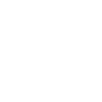 WPLogoWhite80-01.png