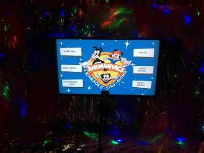 Animaniacs Flat Screen Display at the Grammy Museum