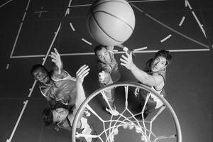 elite basketball stl.jpg