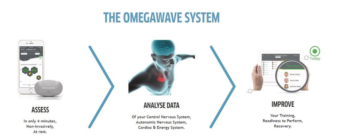 OmegaWave1.jpg