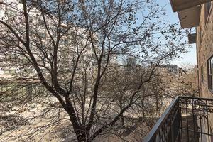 1812 West Ave 209 Austin TX-large-002-007-balcony2-1500x1000-72dpi.jpg