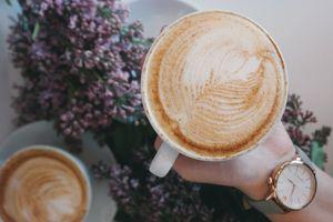 Springtime Coffee and Beverage Distributor