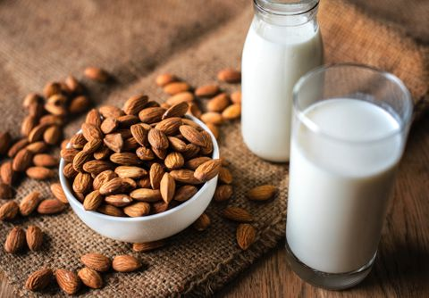Wholesale Vegan and Dairy-Free Milk Supplies