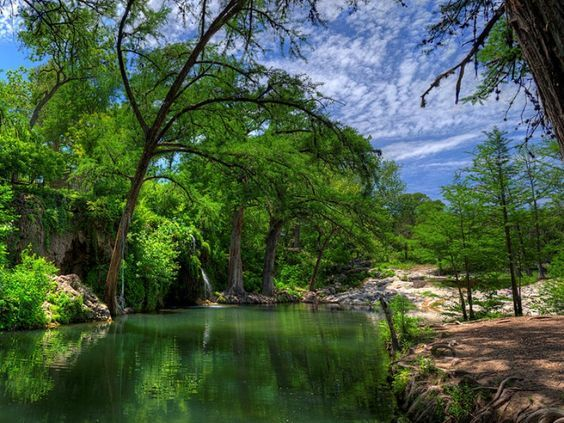 austin watering hole