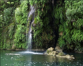 Waterfall at Cypress Pool 1.jpg