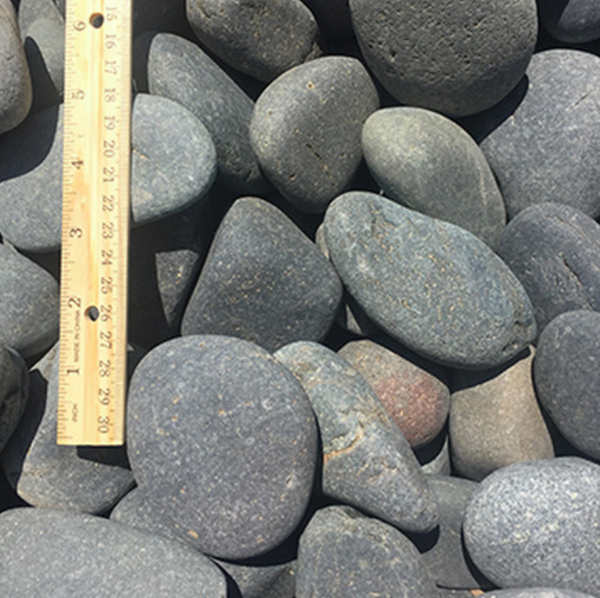 Mexican Beach Pebbles in landscaping