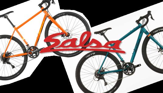 salsa-panel-2.png
