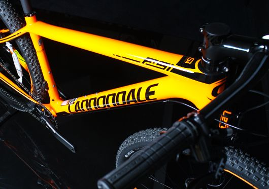 Hardtail-Cannondale-top.jpg