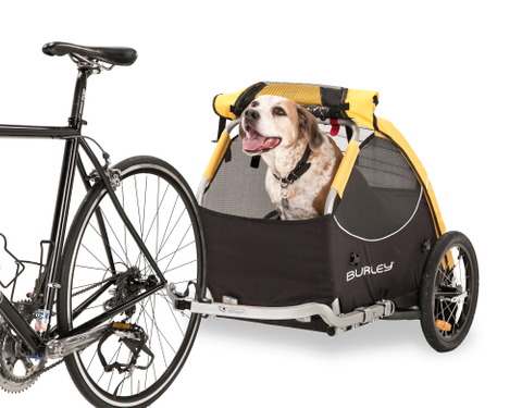 2014_Tailwagon-Dogs-24-947104.jpg