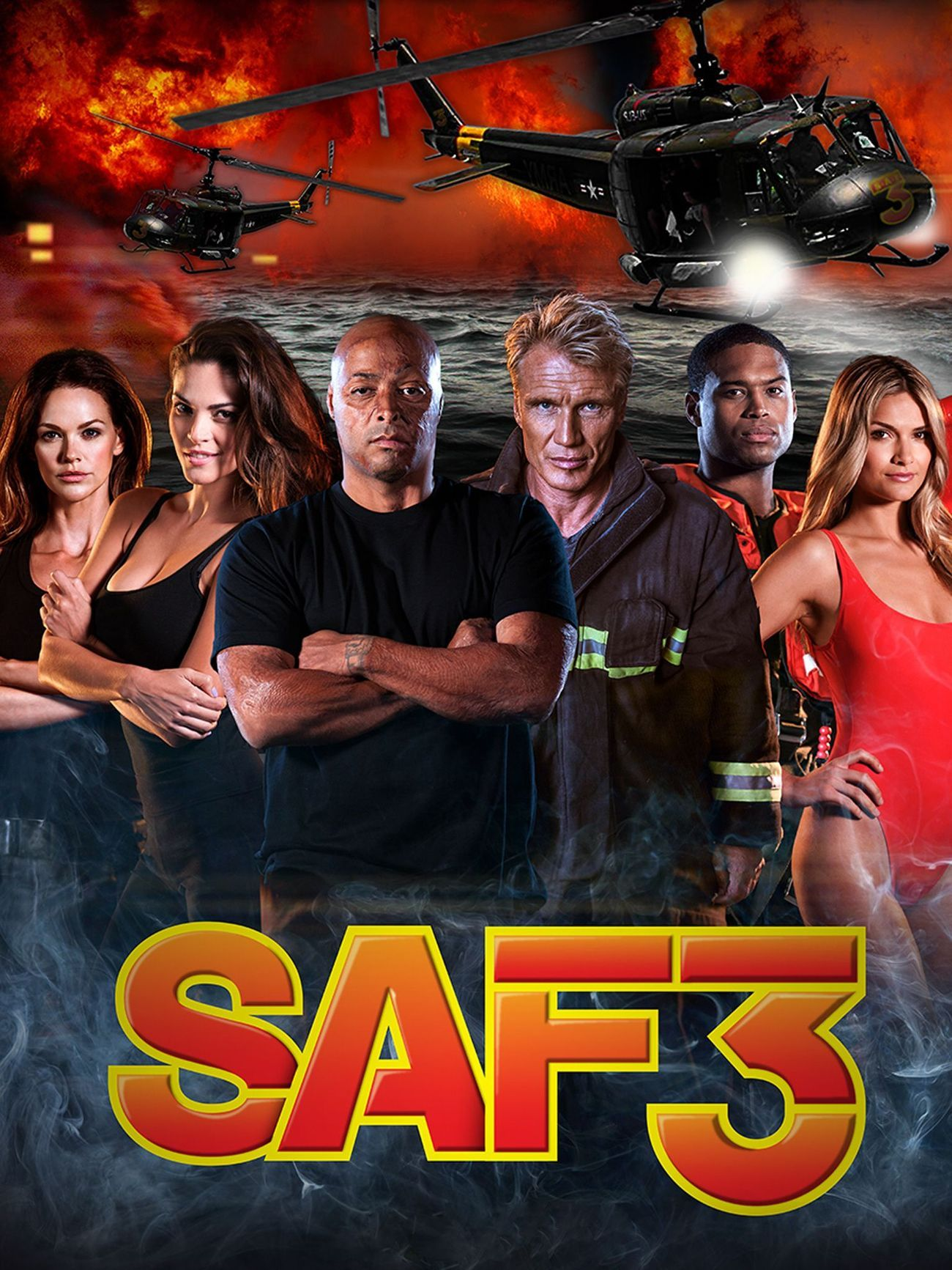 SAF3 image 1.jpg