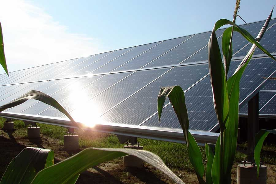 Agricultural Solar Panels for Farmland