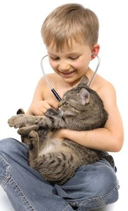 veterinary-compounding.jpg