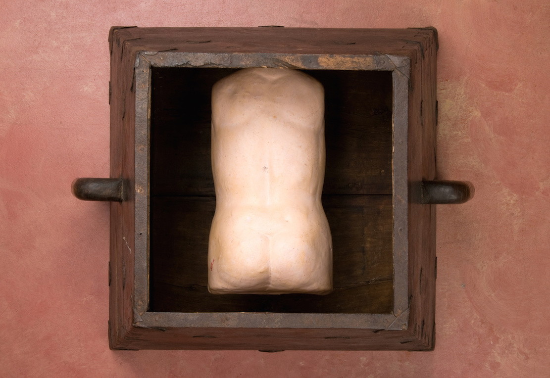becki-smith-torso-4.jpeg