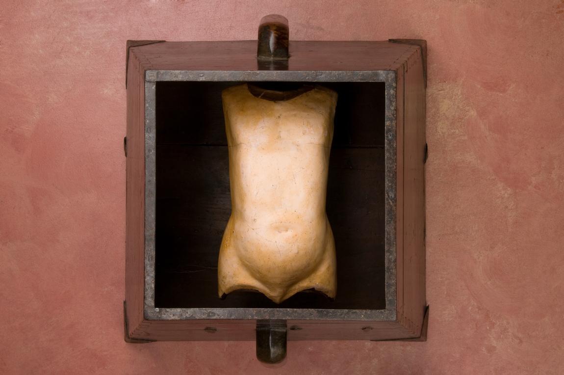 becki-smith-torso-3.jpg
