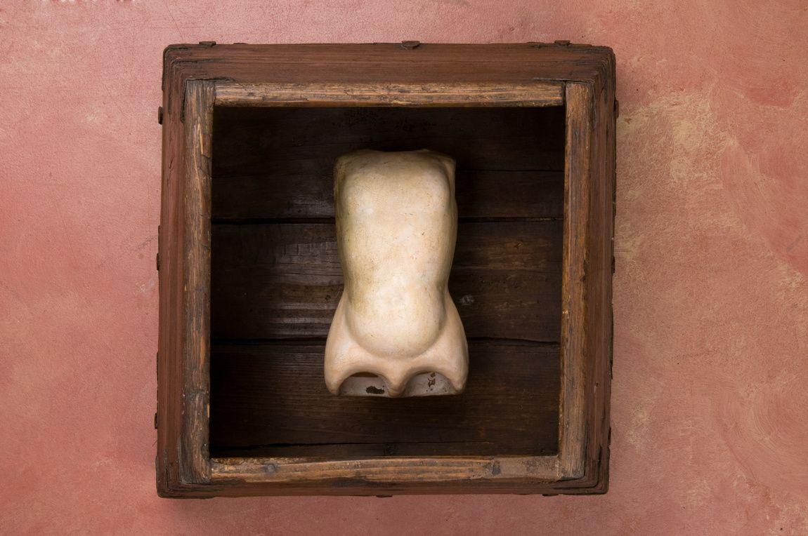 becki-smith-torso-1.jpg