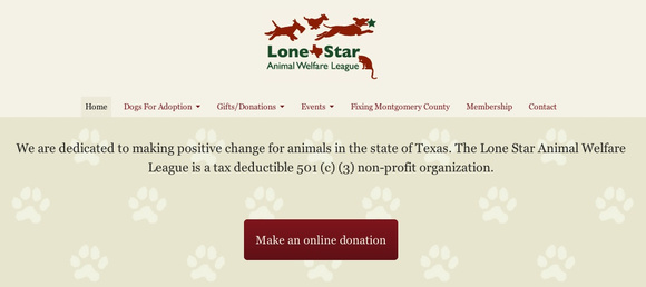 Lone Star Home page CTA