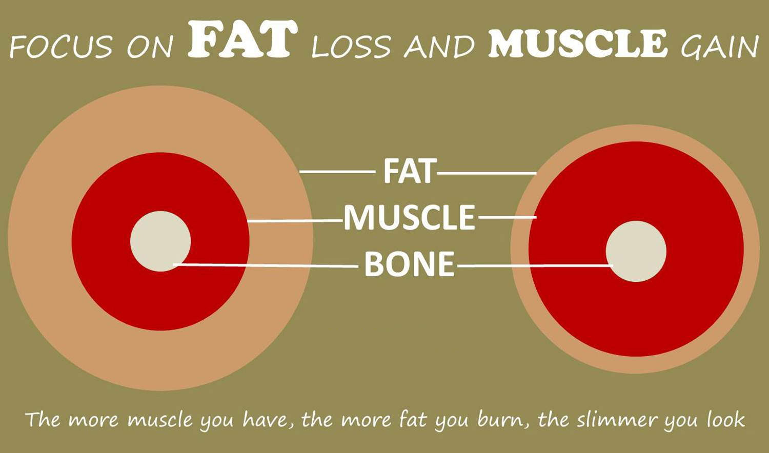 Focus-on-fat-loss-and-muscle-gain.png
