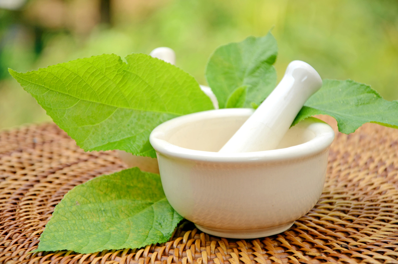 Natural Pharmacy Mortar And Pestle